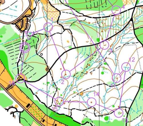 An orienteering map
