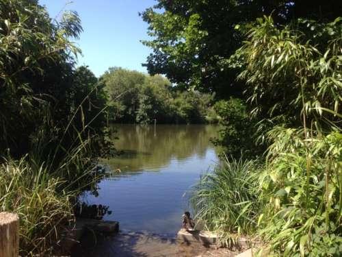 Hampden Park Lake