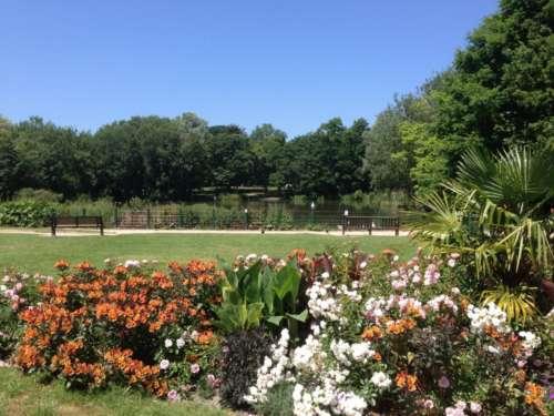 A glorious day at Hampden Park