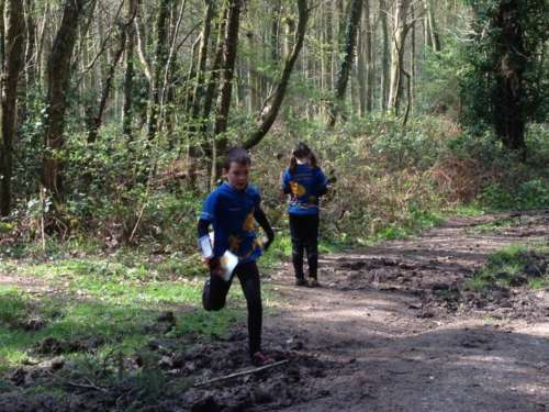 Juniors running at Barnstake Copse